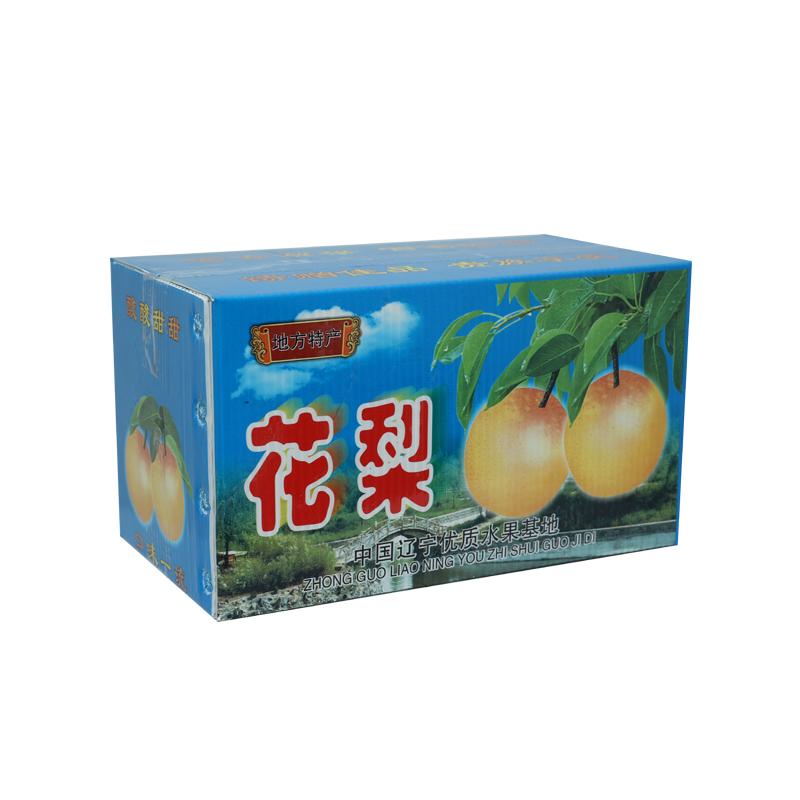 Landwirtschaftliche Kunststoffboxenbehälter aus Wellpappe für Obst Farbdesign in Sondergröße für Verpackung oder Umlauf